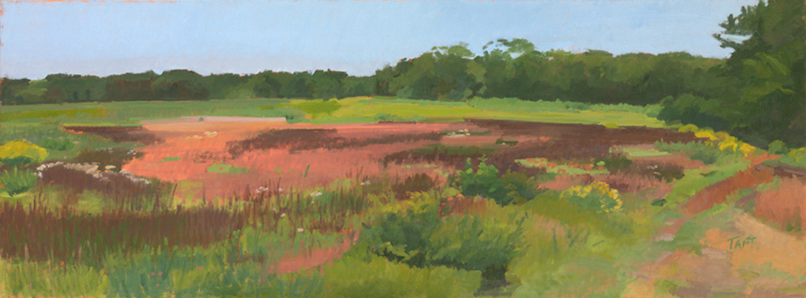 Conservation Meadow,